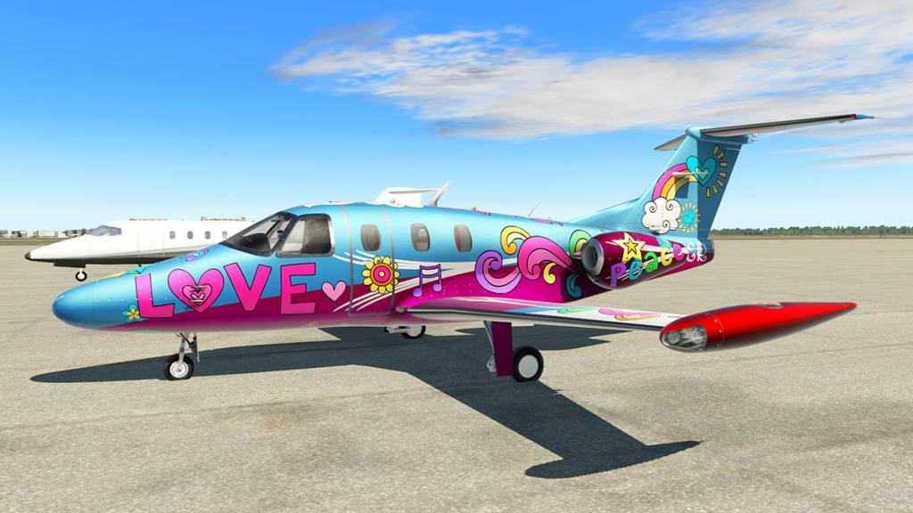 Eclipse_NG_Livery Flower Power.jpg
