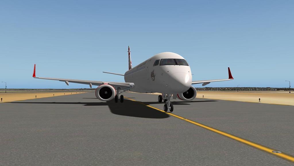 ERJ 195 LR_FLY SYD 4.jpg
