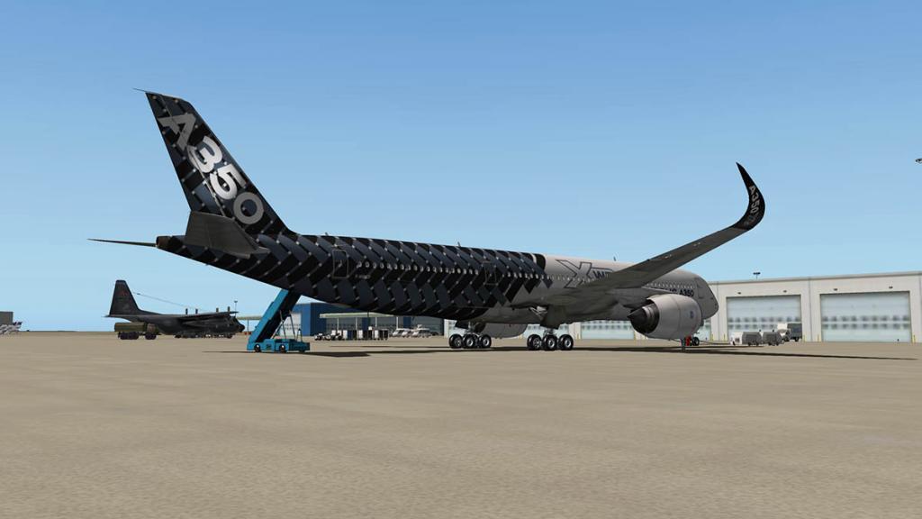 A350_Landing 16.jpg
