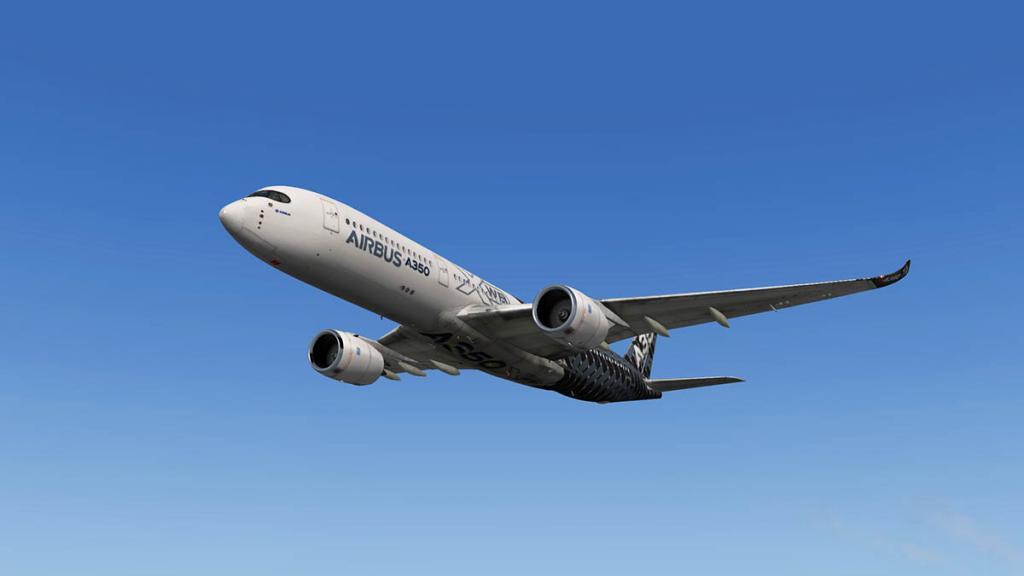 A350_Flight 3.jpg