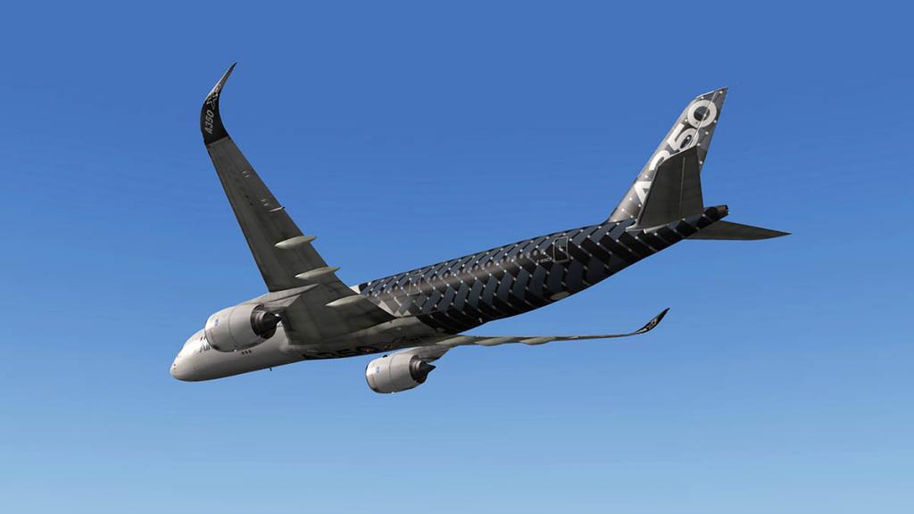 A350_Flight 6.jpg
