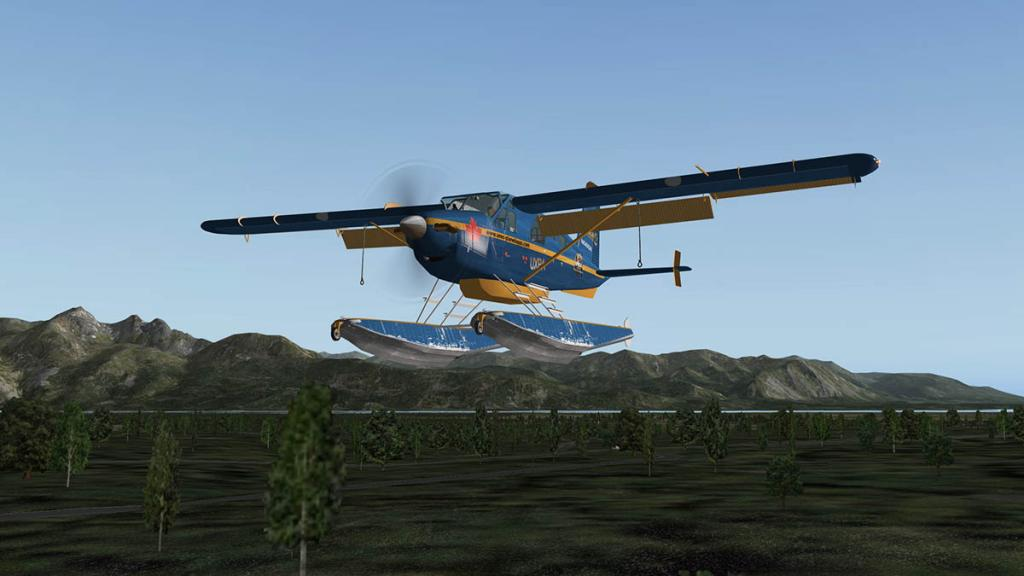 DHC2_Flying_TB_11.thumb.jpg.cd0a7c983d8e