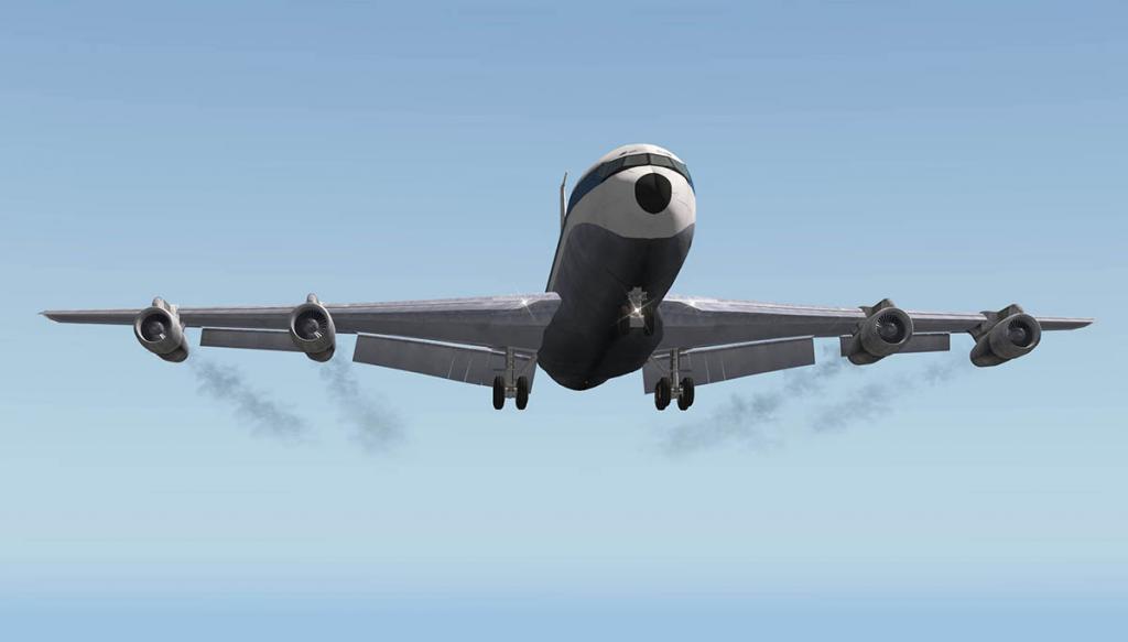 707_320_wings 3.jpg
