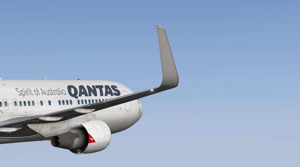 767PW-300ER_winglets 1.jpg