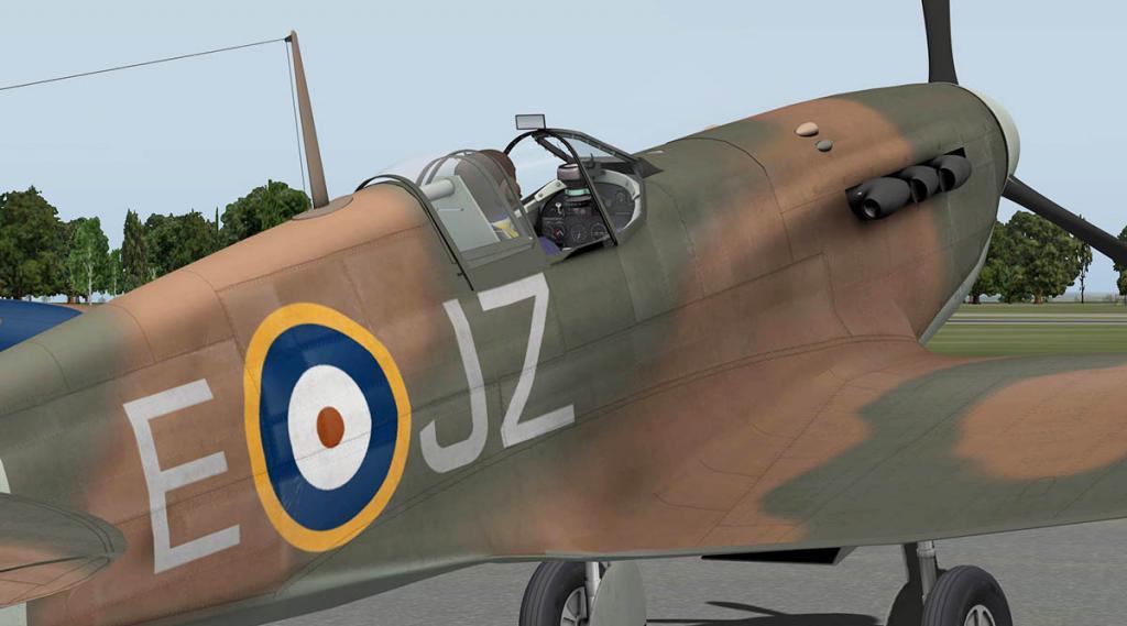 5695f4b7a0f86_RWD_Spitfire_Closeup2.thum