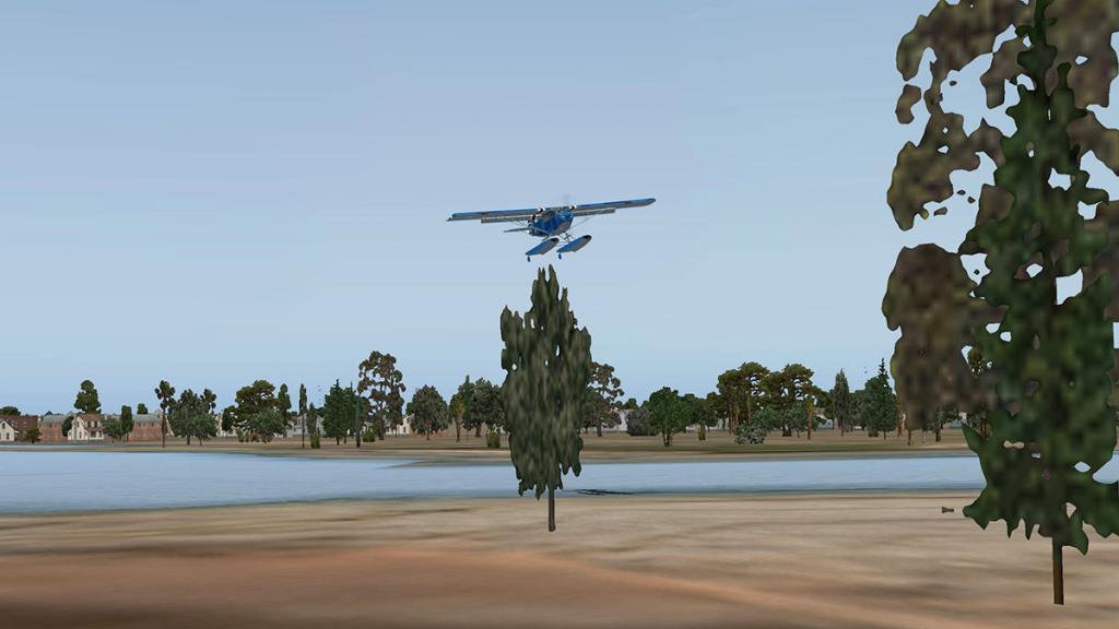 A1-C_Flying 11.jpg