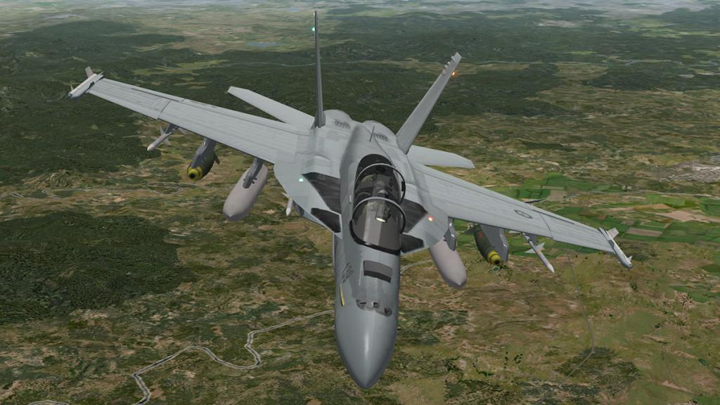 56fa020c3aedf_FA-18F_head6.thumb.jpg.6ba