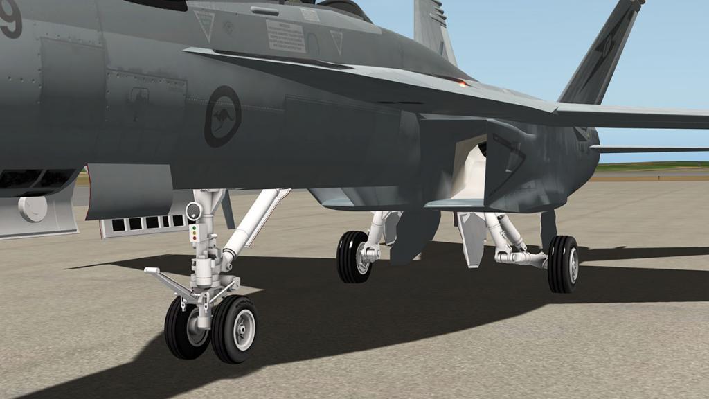 56fa0a95d08fc_FA-18F_Gear1.thumb.jpg.cbf