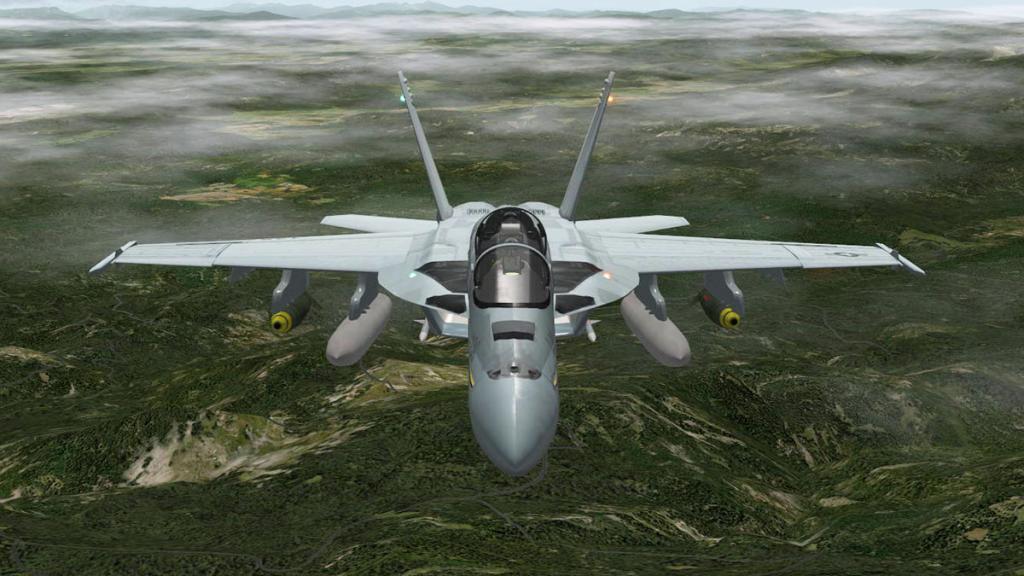 FA-18F_Head 3.jpg