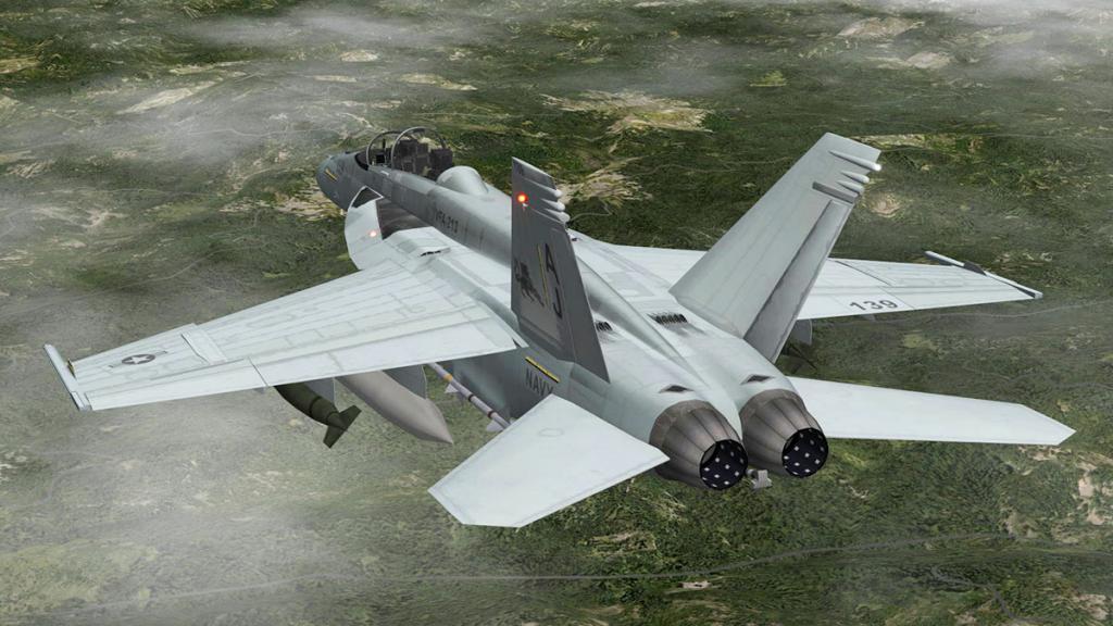 FA-18F_Head 5.jpg