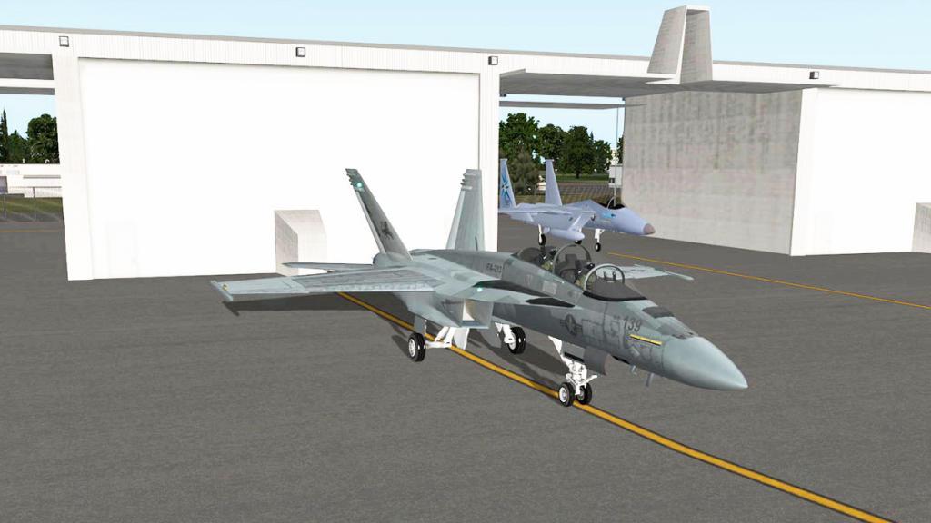 FA-18F_Standard 1.jpg