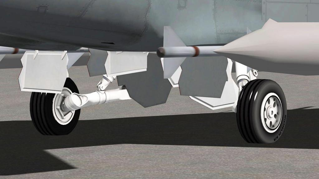 FA-18F_Gear 2.jpg