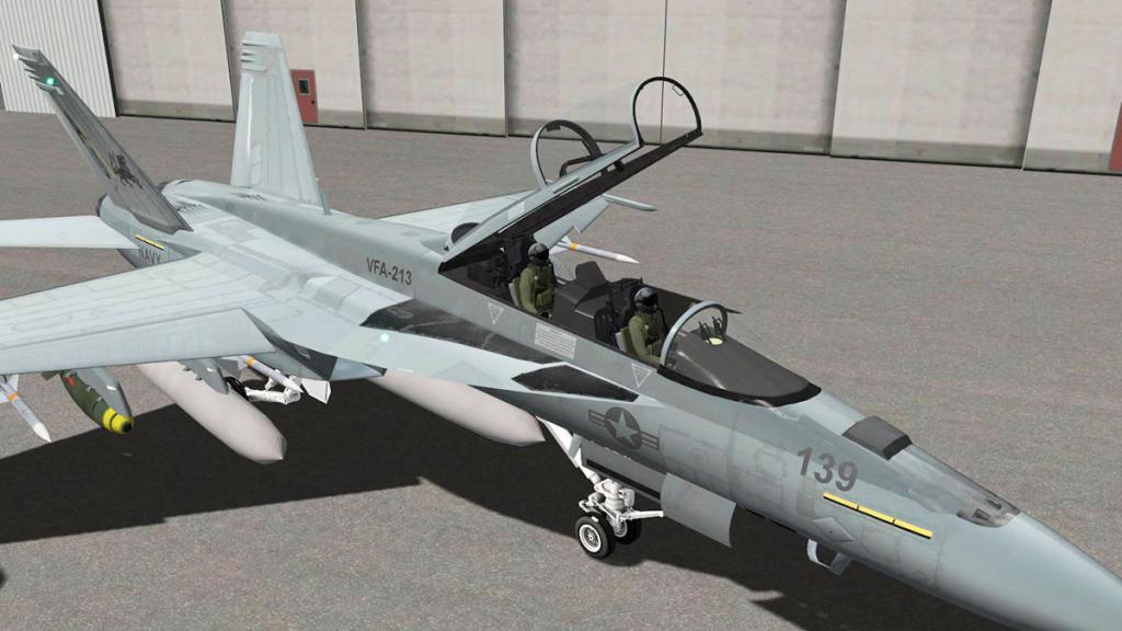FA-18F_Pilots 1.jpg