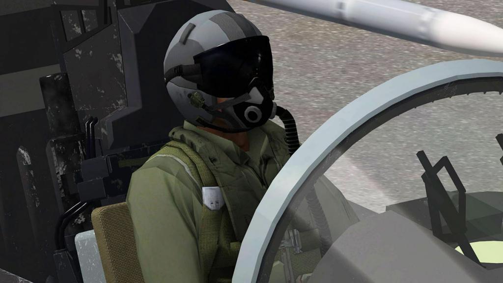 FA-18F_Pilots 3.jpg