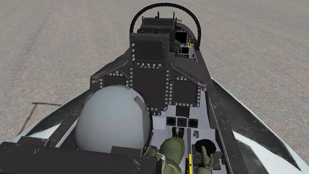 FA-18F_Pilots 4.jpg