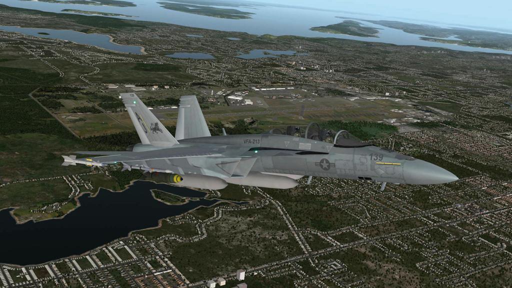 FA-18F_Flying 7.jpg