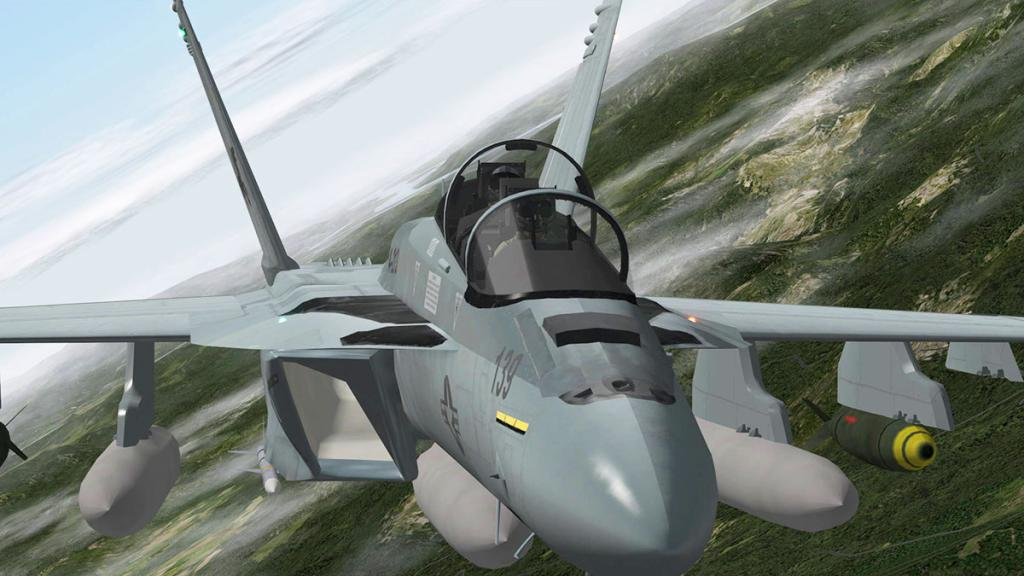 FA-18F_Flying 9.jpg