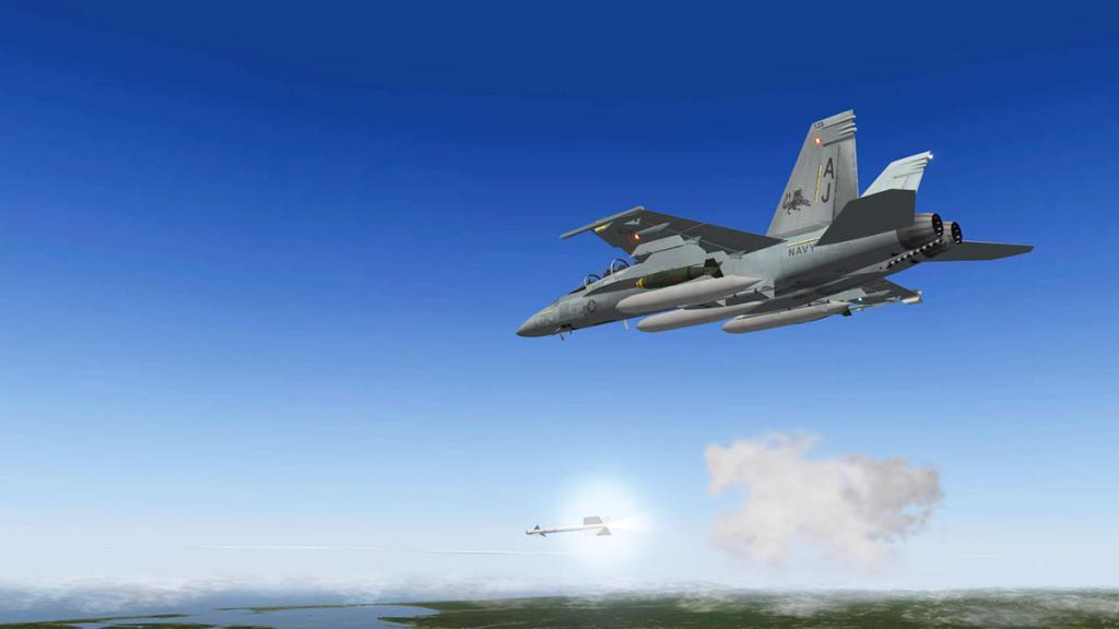 FA-18F_WPN 5.jpg