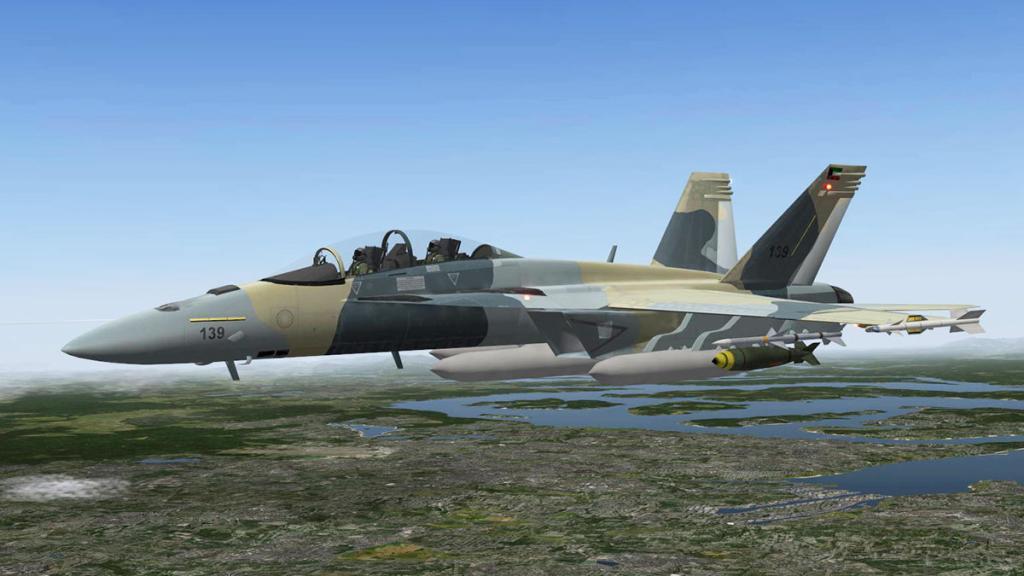 FA-18F_Livery Camo.jpg