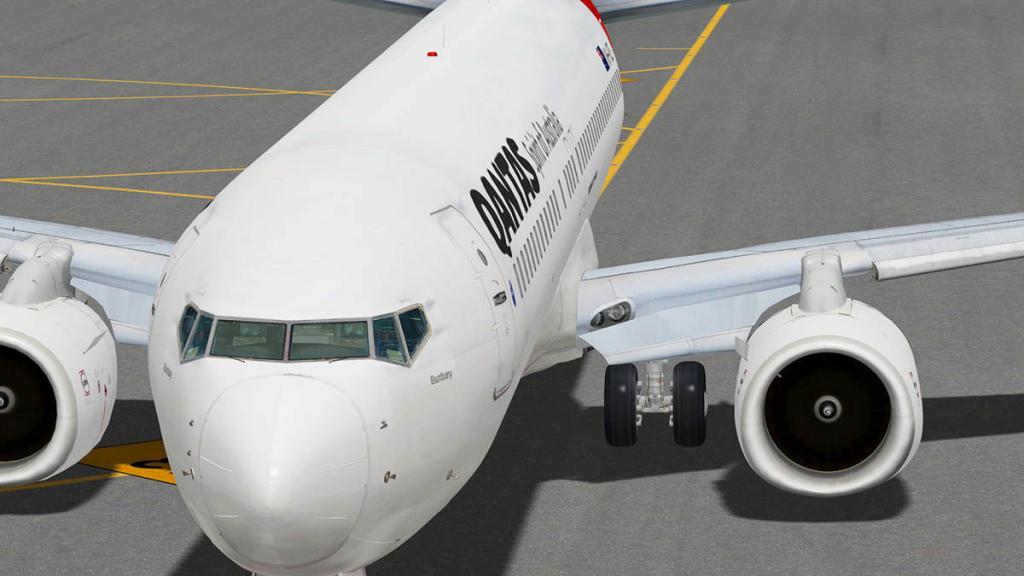 737_Flying 5.jpg