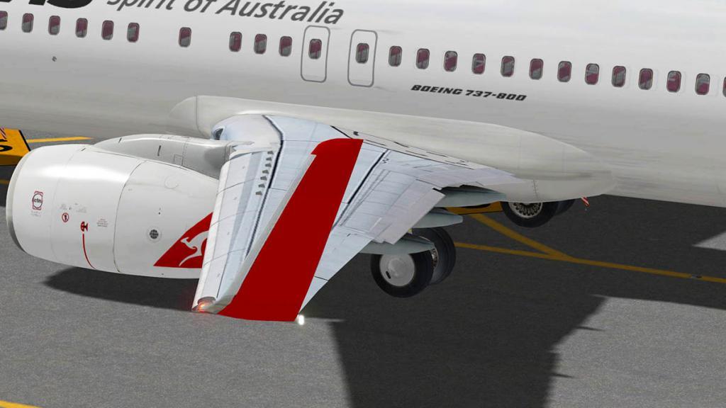 737_Flying 6.jpg
