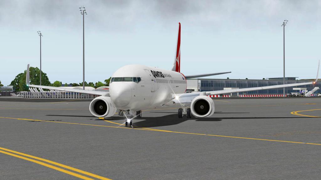 737_Flying 8.jpg