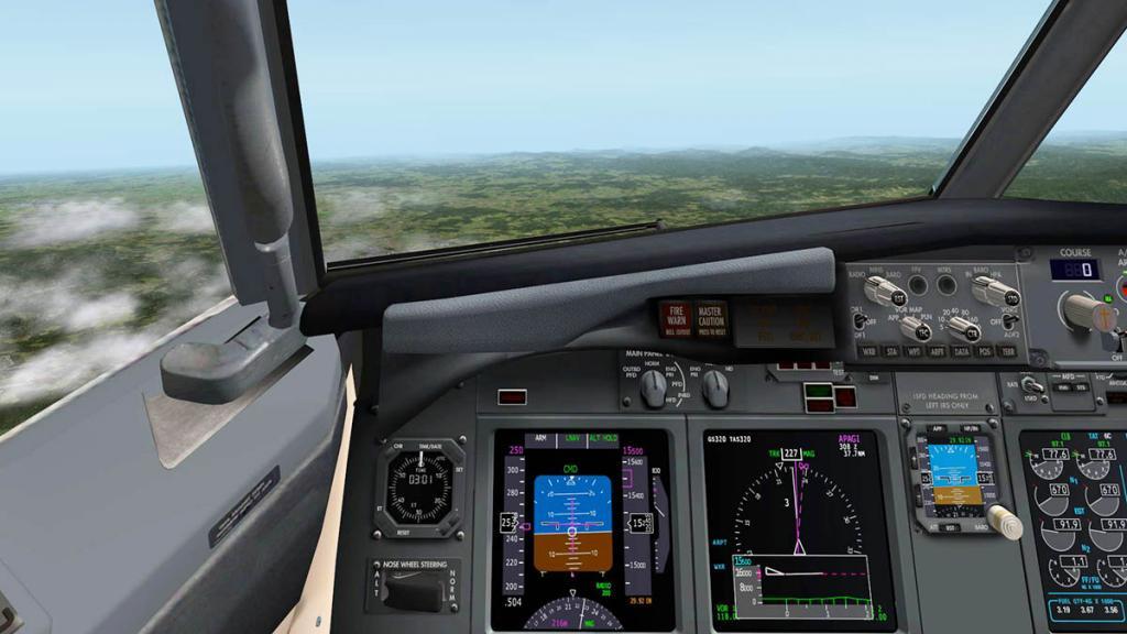 737_Flying 12.jpg