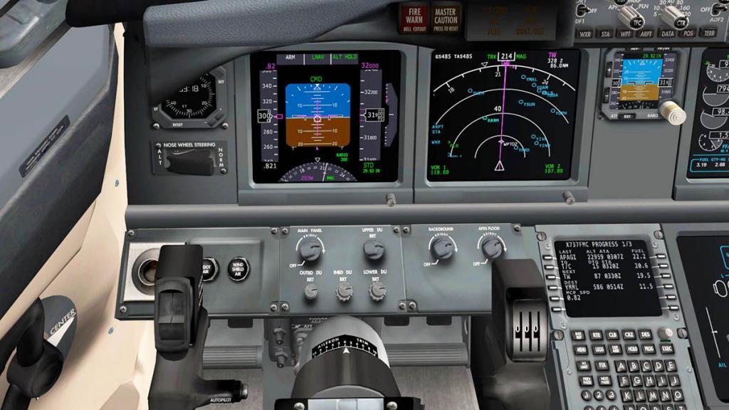 737_panel Flying 2.jpg