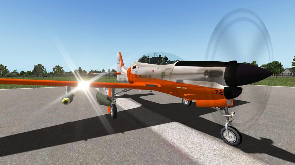 emb312_Flying 1.jpg