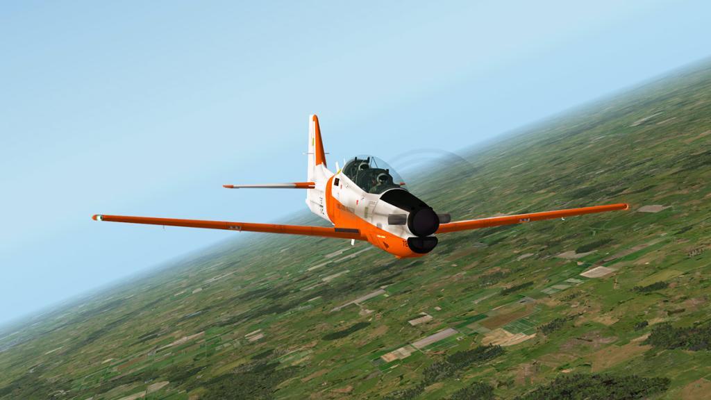 emb312_Flying 6.jpg