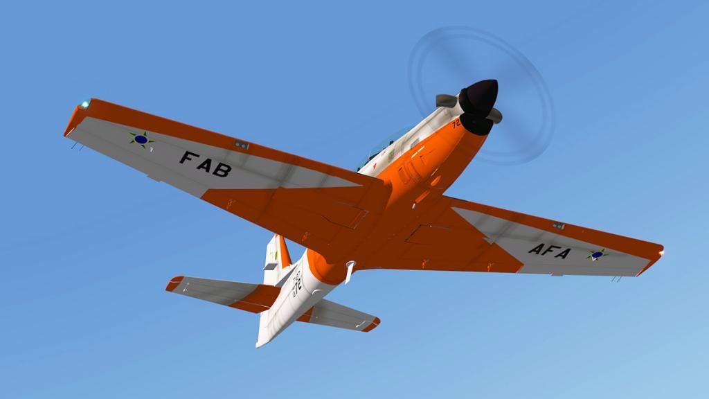 emb312_Flying 7.jpg