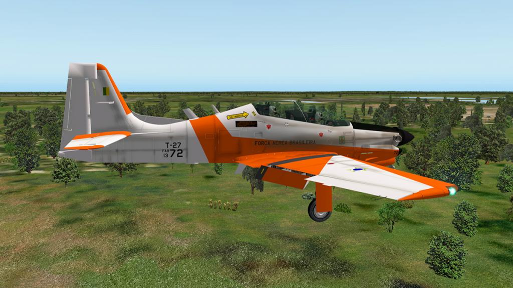 emb312_Flying flaps 10.jpg