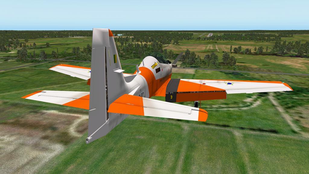 emb312_Flying flaps 11.jpg