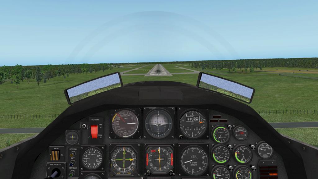 emb312_Flying 13.jpg