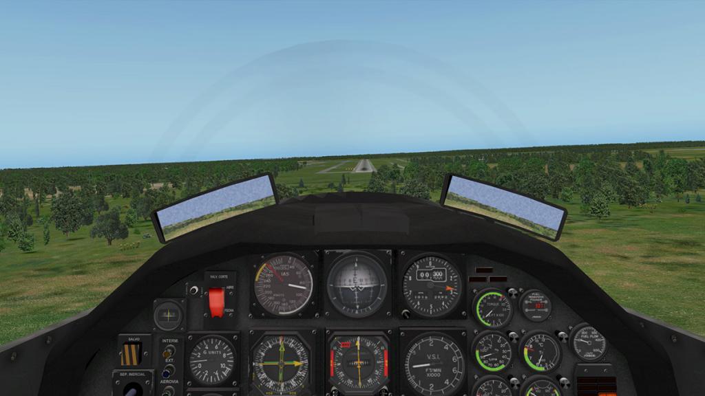 emb312_Flying 15.jpg