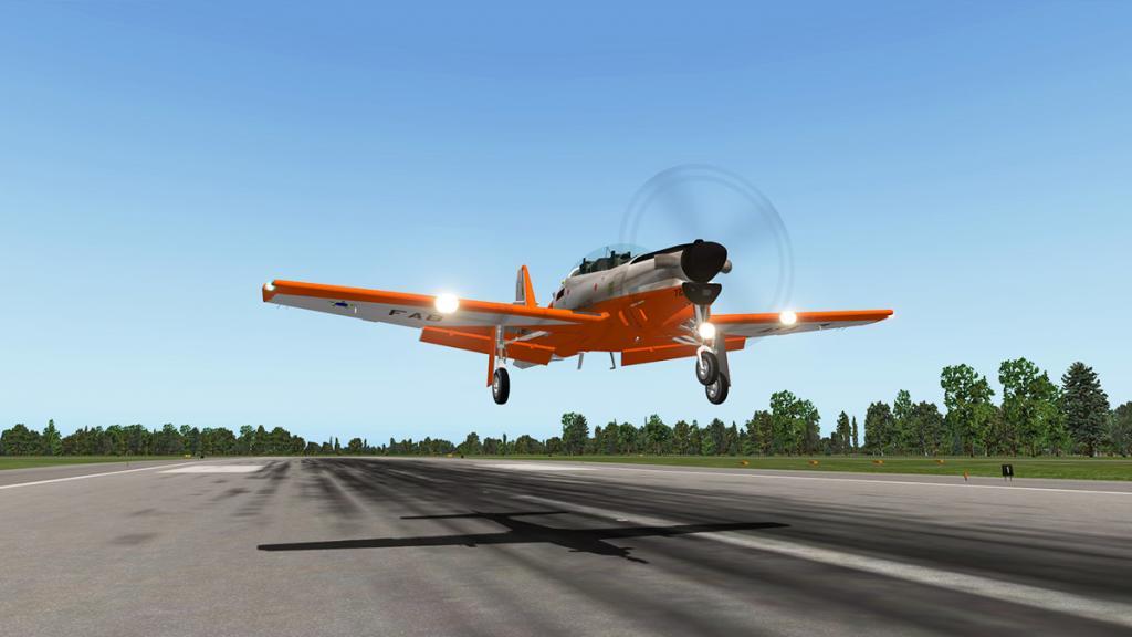 emb312_Flying 16.jpg