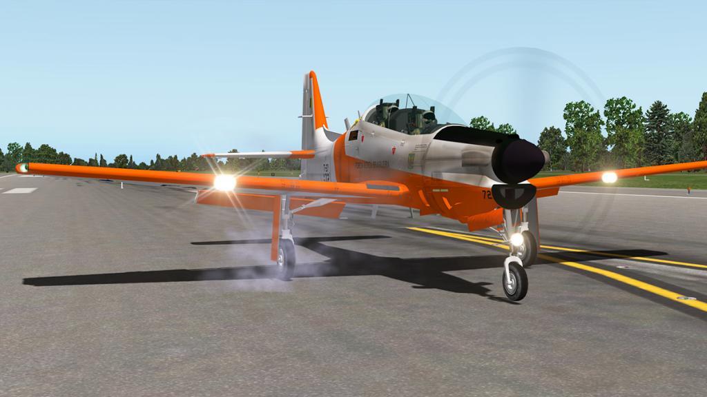 emb312_Flying 17.jpg