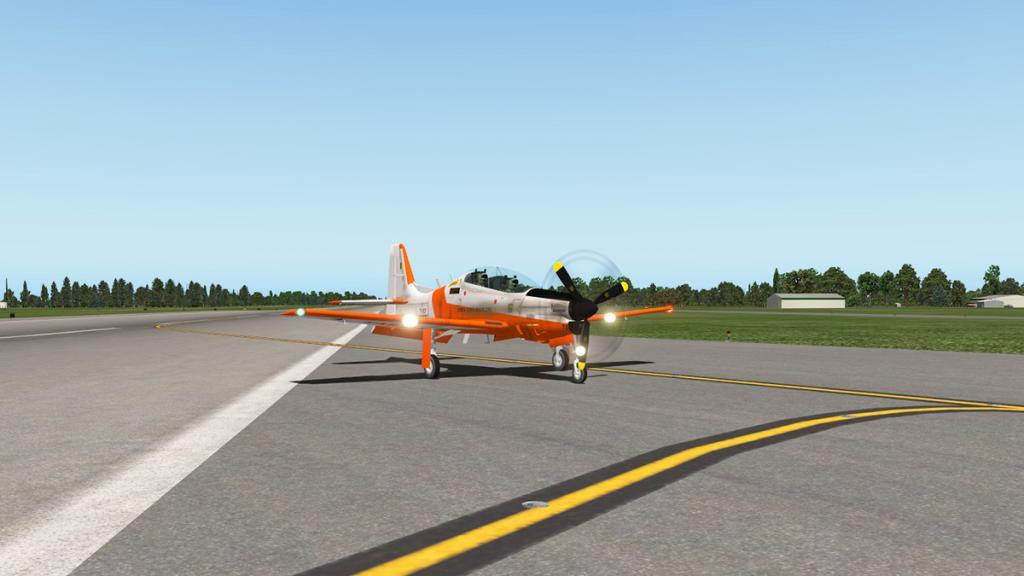 emb312_Flying 19.jpg