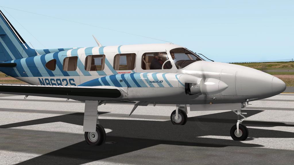 Navajo Flying 5.jpg