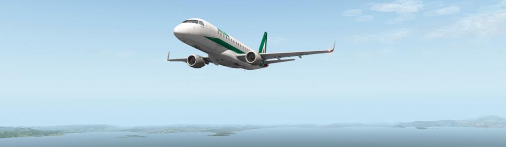 E175_Flying LG 6.jpg
