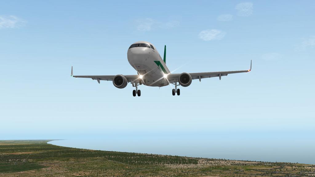 E175_Flying 21.jpg
