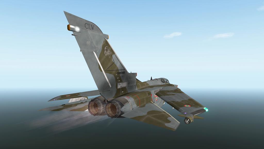 Tornado_Flying 14.jpg