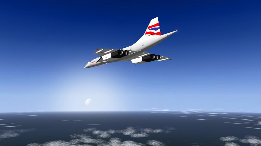 Concorde_Head 6.jpg