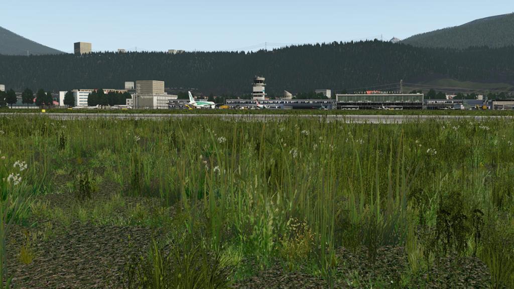LOWI - XP11 - Grass 1.jpg