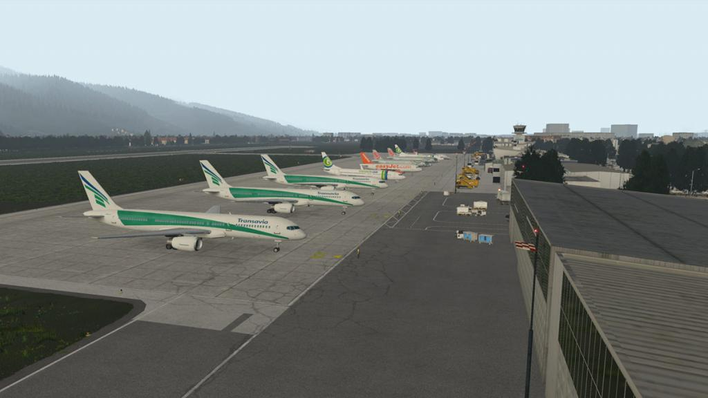 LOWI - XP11 - Animations 4.jpg