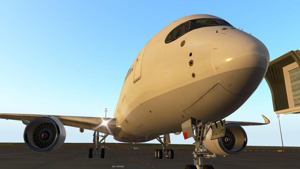 A350_Head 2.jpg