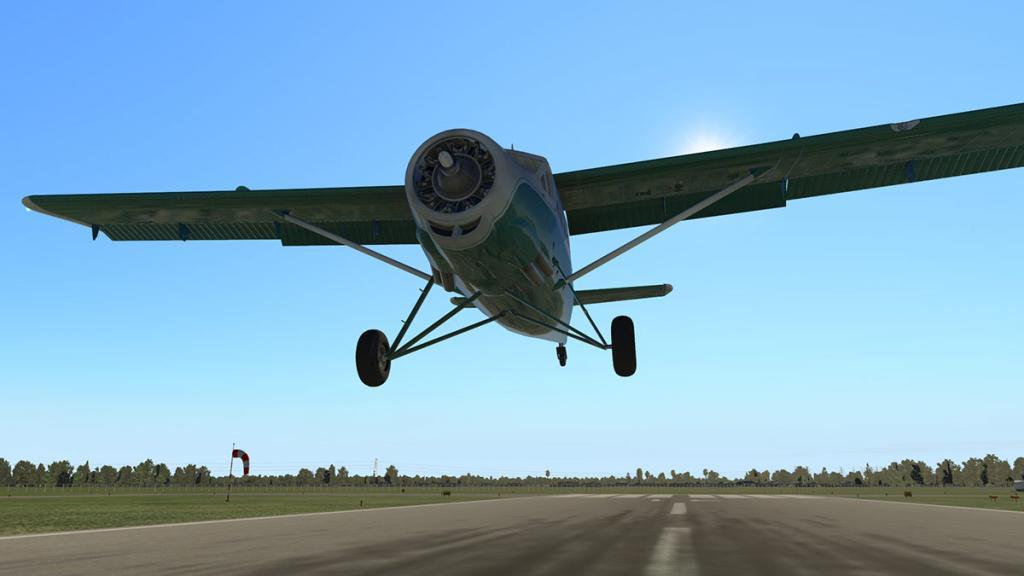 DHC-3 Otter_Landing 3.jpg