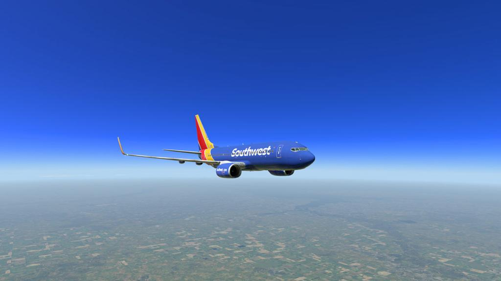 737_head 1.jpg