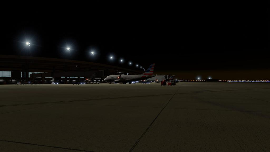 Aerosoft DFW_Lighting 11.jpg