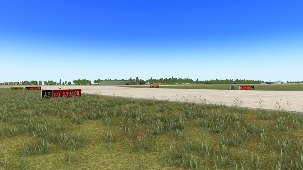 a320neo_grass 2.jpg